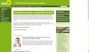 gruene_fraktion